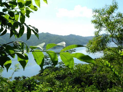 Natural Park Hanabanilla